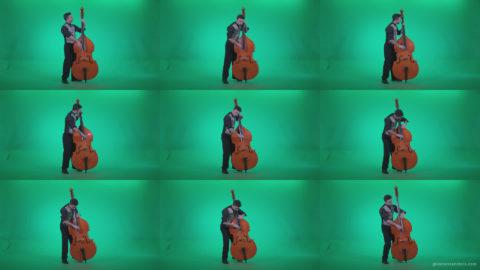 Contrabass-Jazz-Performer-j4 Green Screen Stock