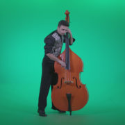 Contrabass-Jazz-Performer-j4_002 Green Screen Stock
