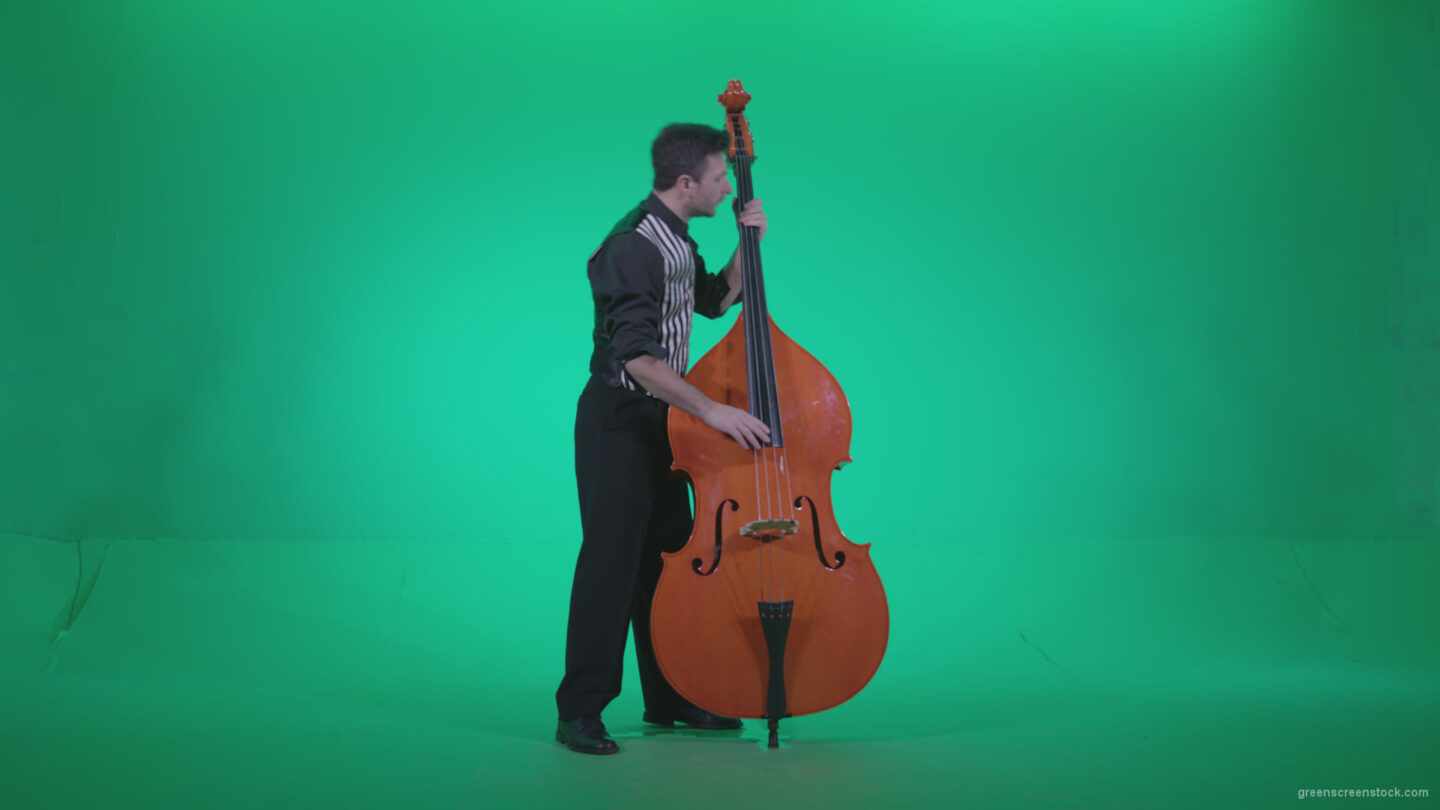 vj video background Contrabass-Jazz-Performer-j4_003