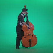 Contrabass-Jazz-Performer-j4_004 Green Screen Stock