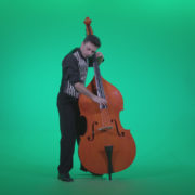 Contrabass-Jazz-Performer-j4_005 Green Screen Stock