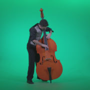 Contrabass-Jazz-Performer-j4_006 Green Screen Stock