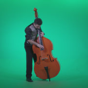 Contrabass-Jazz-Performer-j4_007 Green Screen Stock