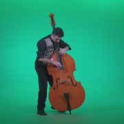 Contrabass-Jazz-Performer-j4_008 Green Screen Stock