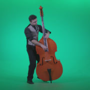 Contrabass-Jazz-Performer-j4_009 Green Screen Stock