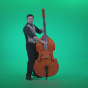 Contrabass-Jazz-Performer-j5-Green-Screen-Video-Footage_001 Green Screen Stock