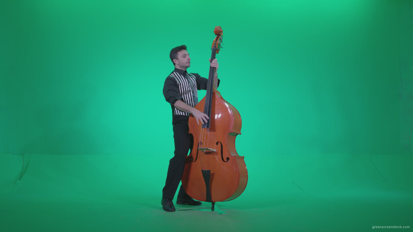 vj video background Contrabass-Jazz-Performer-j5-Green-Screen-Video-Footage_003