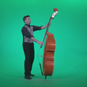 Contrabass-Jazz-Performer-j5-Green-Screen-Video-Footage_005 Green Screen Stock