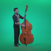 Contrabass-Jazz-Performer-j5-Green-Screen-Video-Footage_006 Green Screen Stock