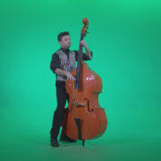 Contrabass-Jazz-Performer-j5-Green-Screen-Video-Footage_008 Green Screen Stock