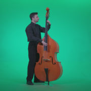 Contrabass-Jazz-Performer-j6-Green-Screen-Video-Footage_002 Green Screen Stock