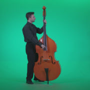 Contrabass-Jazz-Performer-j6-Green-Screen-Video-Footage_006 Green Screen Stock