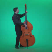 Contrabass-Jazz-Performer-j6-Green-Screen-Video-Footage_009 Green Screen Stock