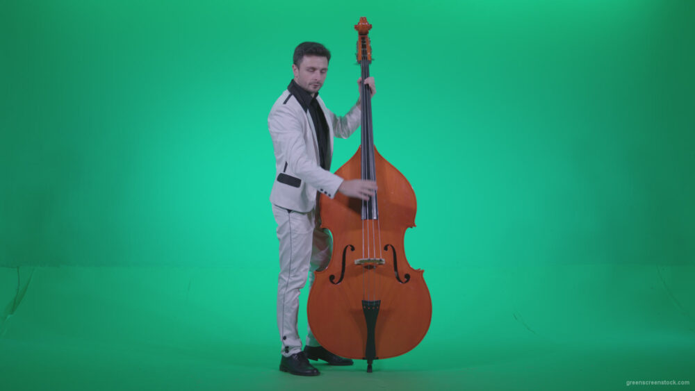 vj video background Contrabass-Jazz-Performer-j7-Green-Screen-Video-Footage_003