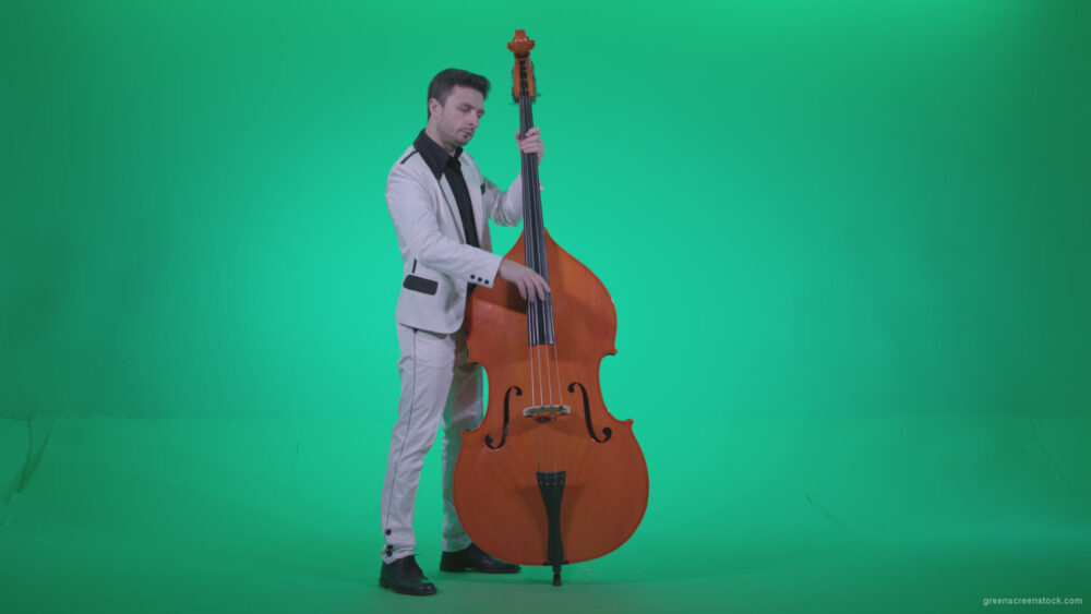 vj video background Contrabass-Jazz-Performer-j8-Green-Screen-Video-Footage_003
