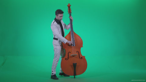 Contrabass-Jazz-Performer-j8-Green-Screen-Video-Footage_009 Green Screen Stock