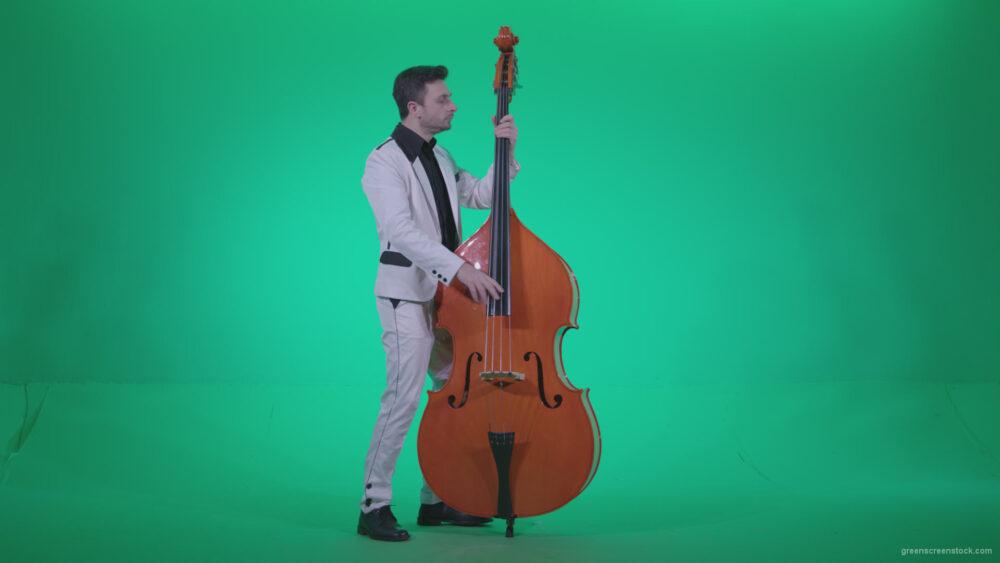 vj video background Contrabass-Jazz-Performer-j9-Green-Screen-Video-Footage_003