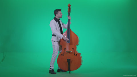 vj video background Contrabass-Jazz-Performer-j9-Green-Screen-Video-Footage_003