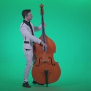 Contrabass-Jazz-Performer-j9-Green-Screen-Video-Footage_004 Green Screen Stock
