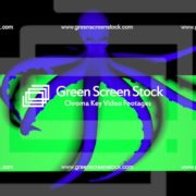 Double-Octopus-Perspective-UHD-60fps-LIMEART_002 Green Screen Stock