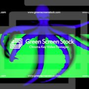 Double-Octopus-Perspective-UHD-60fps-LIMEART_005 Green Screen Stock