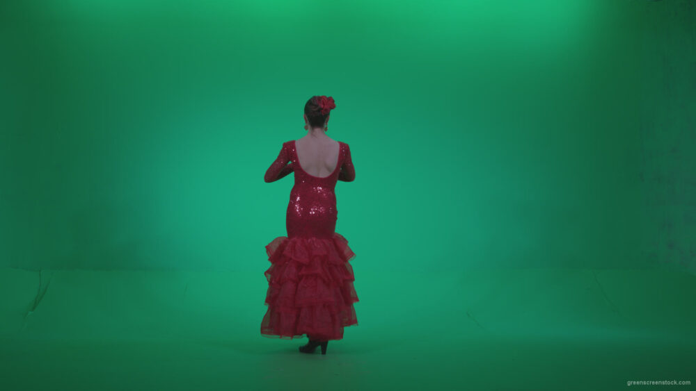 vj video background Flamenco-Red-Dress-rd1_003