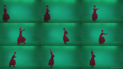 Flamenco-Red-Dress-rd6-Green-Screen-Video-Footage Green Screen Stock