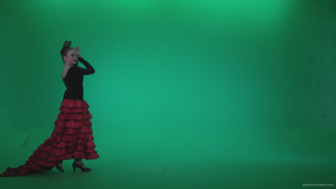 vj video background Flamenco-Red-and-Black-Dress-rb10-Green-Screen-Video-Footage_003