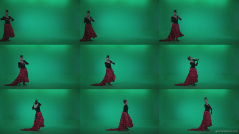 Flamenco-Red-and-Black-Dress-rb11-Green-Screen-Video-Footage Green Screen Stock