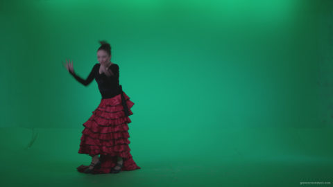 vj video background Flamenco-Red-and-Black-Dress-rb1_003