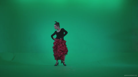 vj video background Flamenco-Red-and-Black-Dress-rb2_003