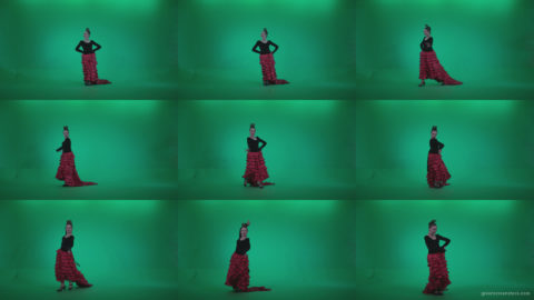 Flamenco-Red-and-Black-Dress-rb3 Green Screen Stock