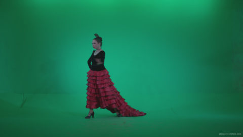 vj video background Flamenco-Red-and-Black-Dress-rb3_003
