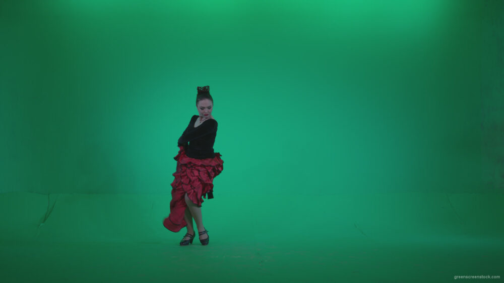vj video background Flamenco-Red-and-Black-Dress-rb4_003