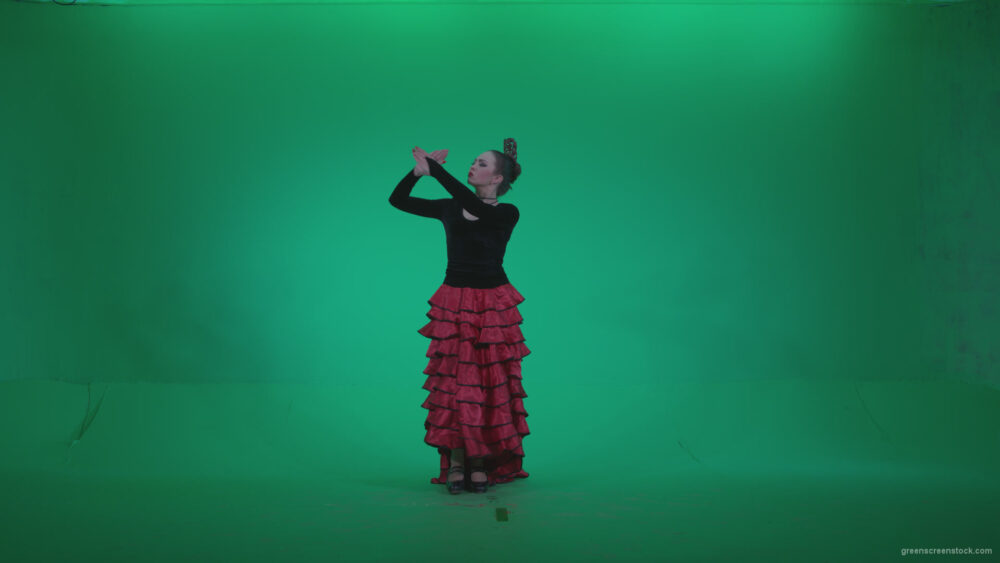 vj video background Flamenco-Red-and-Black-Dress-rb9-Green-Screen-Video-Footage_003