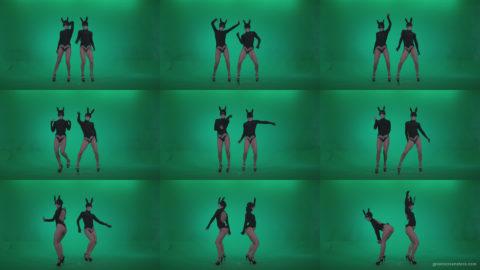 Go-go-Dancer-Black-Rabbit-u1-Green-Screen-Video-Footage Green Screen Stock