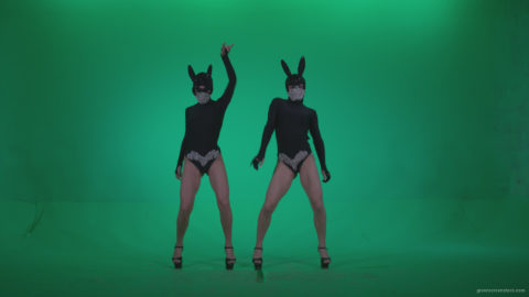vj video background Go-go-Dancer-Black-Rabbit-u1-Green-Screen-Video-Footage_003
