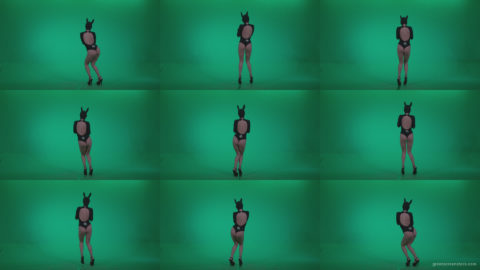 Go-go-Dancer-Black-Rabbit-u11-Green-Screen-Video-Footage Green Screen Stock