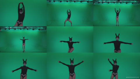 Go-go-Dancer-Black-Rabbit-u12-Green-Screen-Video-Footage Green Screen Stock