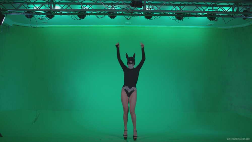 vj video background Go-go-Dancer-Black-Rabbit-u12-Green-Screen-Video-Footage_003