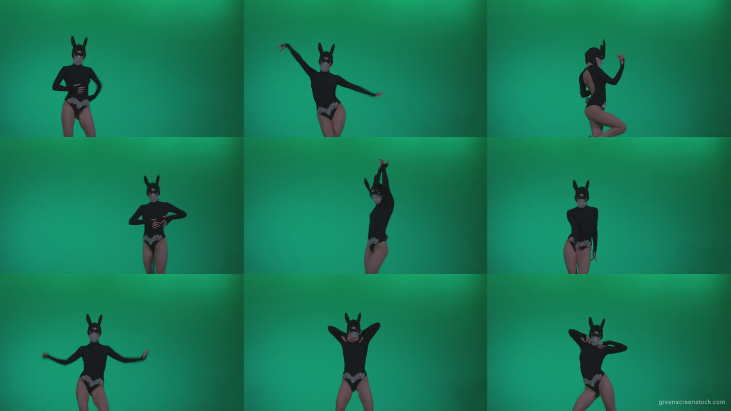Go-go-Dancer-Black-Rabbit-u13-Green-Screen-Video-Footage Green Screen Stock
