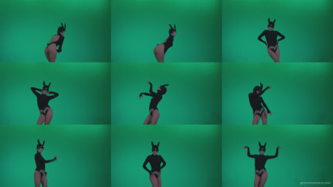 Go-go-Dancer-Black-Rabbit-u14-Green-Screen-Video-Footage Green Screen Stock