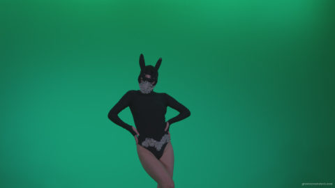 vj video background Go-go-Dancer-Black-Rabbit-u14-Green-Screen-Video-Footage_003