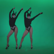 Go-go-Dancer-Black-Rabbit-u5-Green-Screen-Video-Footage_001 Green Screen Stock