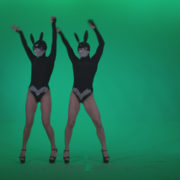 Go-go-Dancer-Black-Rabbit-u5-Green-Screen-Video-Footage_009 Green Screen Stock
