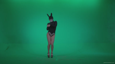 vj video background Go-go-Dancer-Black-Rabbit-u6-Green-Screen-Video-Footage_003