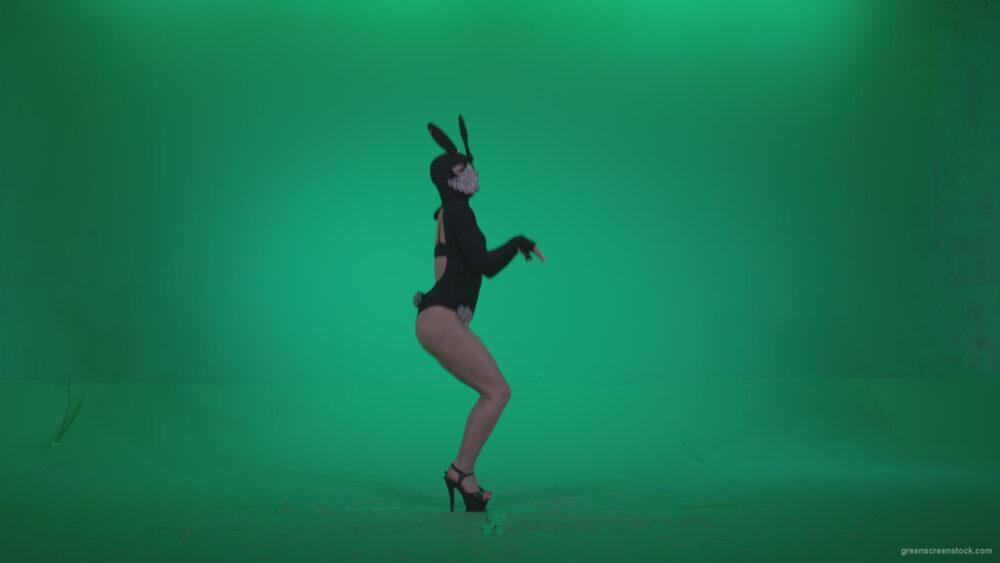 vj video background Go-go-Dancer-Black-Rabbit-u7-Green-Screen-Video-Footage_003
