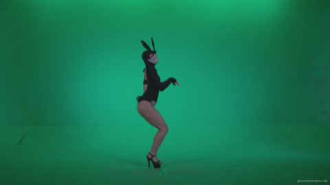 vj video background Go-go-Dancer-Black-Rabbit-u7-Green-Screen-Video-Footage_003