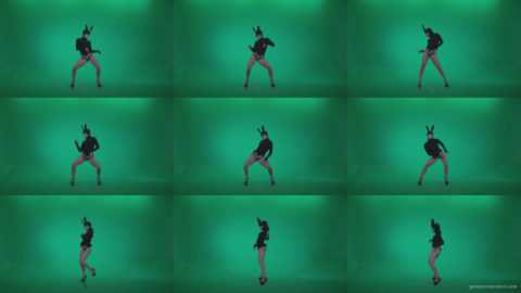 Go-go-Dancer-Black-Rabbit-u8-Green-Screen-Video-Footage Green Screen Stock
