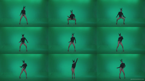 Go-go-Dancer-Black-Rabbit-u9-Green-Screen-Video-Footage Green Screen Stock
